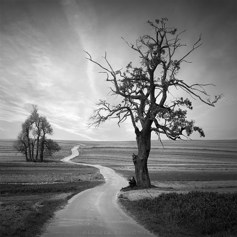 Photograph The desire for the road by Leszek Bujnowski on 500px