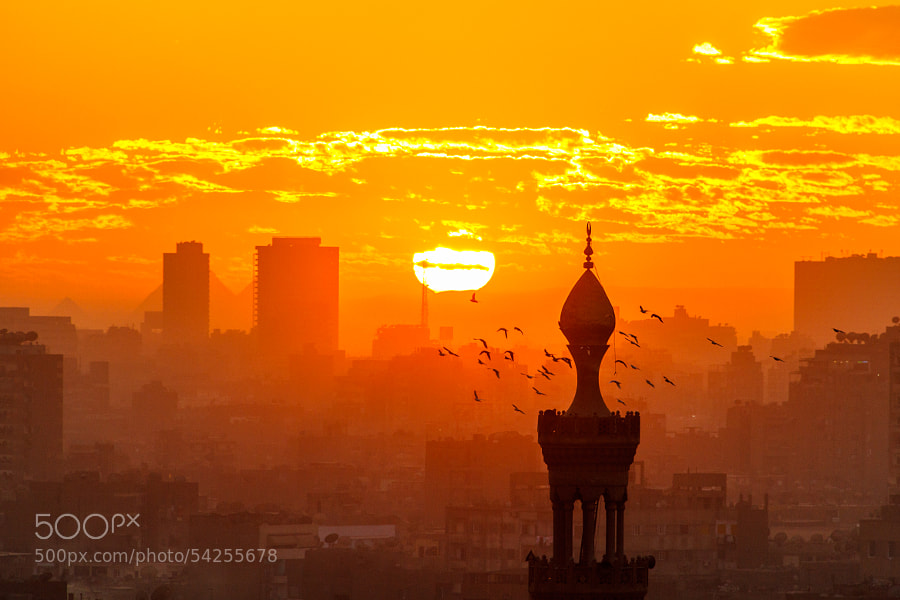 Sunset in Cairo from Al-Azhar Garden, Egypt. The Pyramids behind two buildings in background