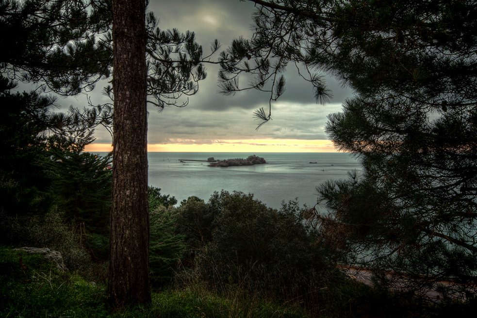 Photograph Castle Through The Trees by Cliff Huby on 500px