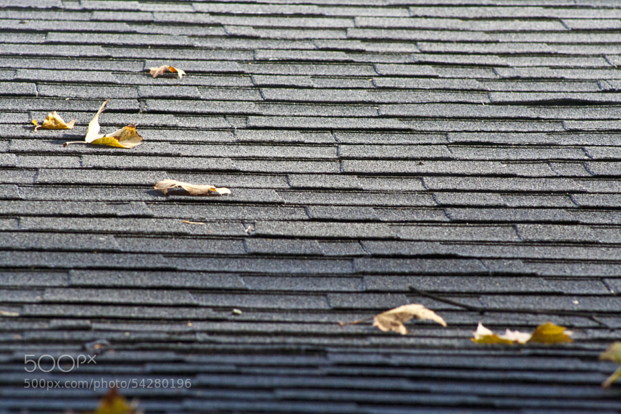 A roof top after a winter rain in Tarzana, California.