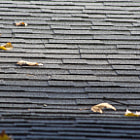 A roof top after a winter rain in Tarzana, California.