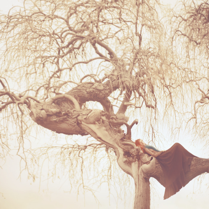 Photograph closer by oprisco  on 500px