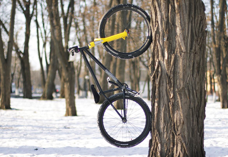 Photograph winter bike by zhygun on 500px