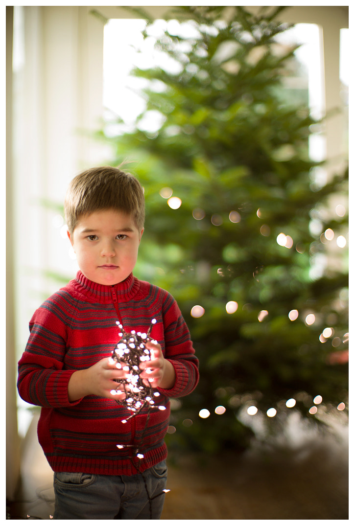 Photograph start of the Christmas season by Istvan Penzes on 500px