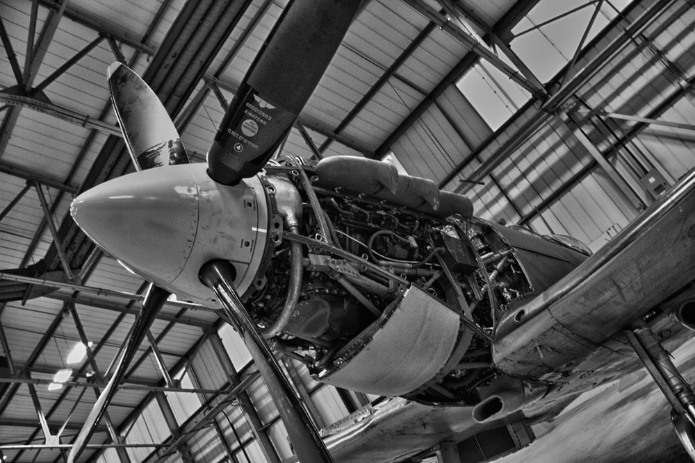 Photograph Smiling Spitfire by Sean Morgan on 500px