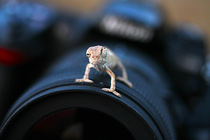 Photograph nikon d ? by mehmet karaca on 500px