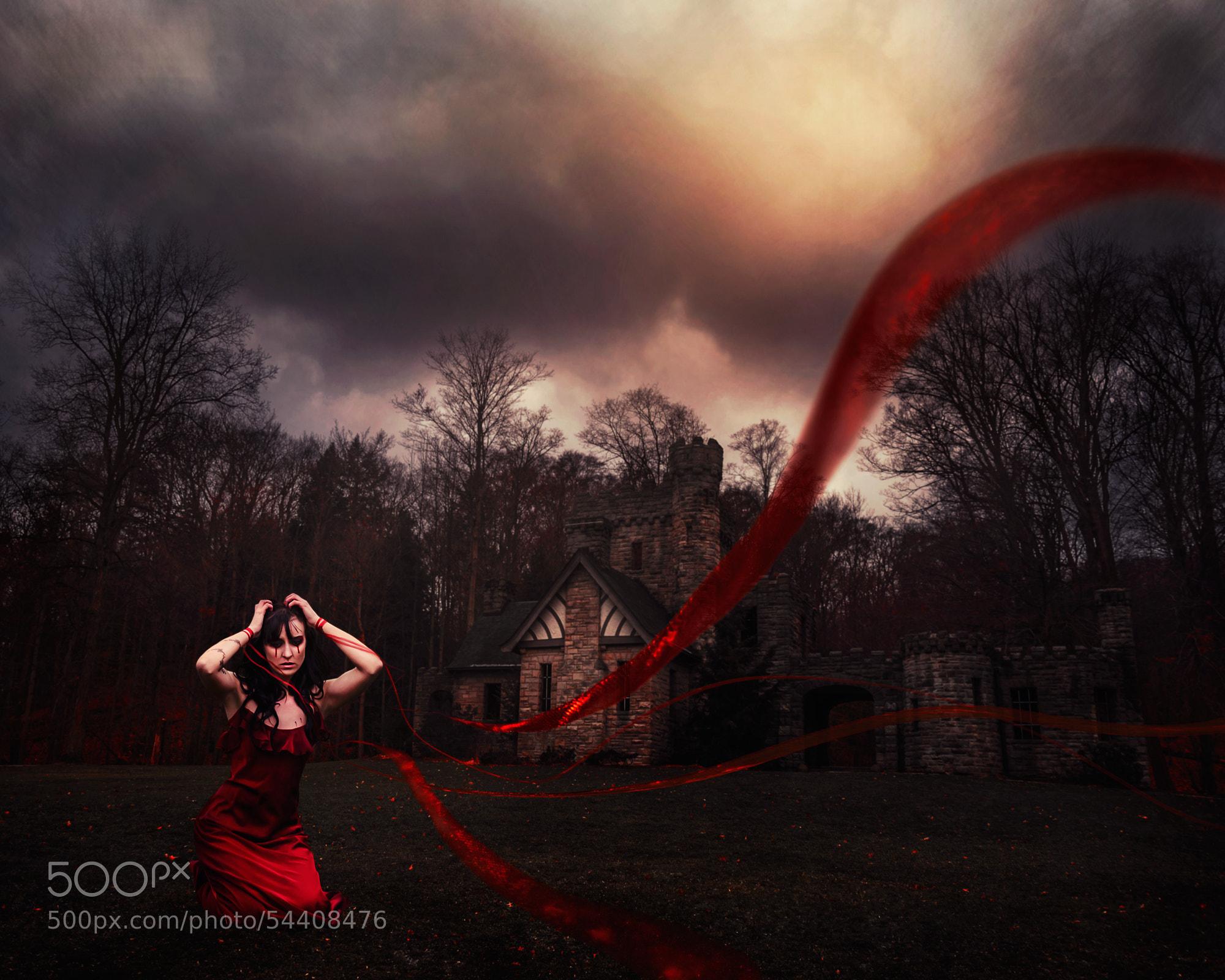 Photograph Loneliness of the Regretful Heart by Julz Kirschenbaum on 500px