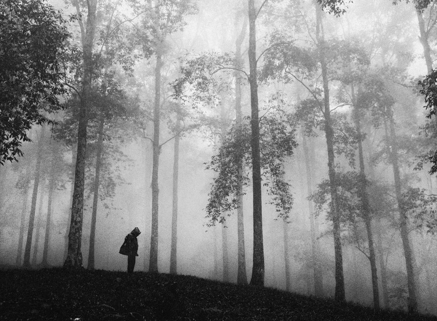 Photograph Sunday Morning by Hengki Lee on 500px