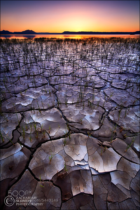 Photograph Alvord Mosaic by Zack Schnepf on 500px