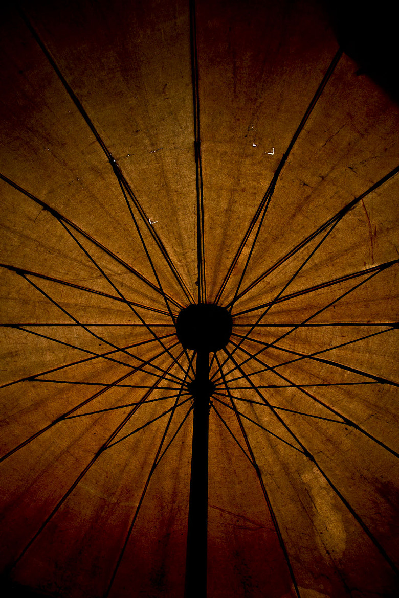 Photograph The umbrella. by Laurence Penne on 500px