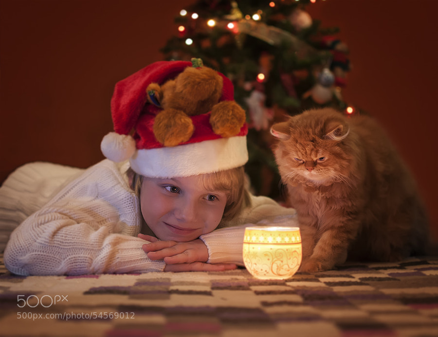 Photograph Christmas is coming by Maria Churkina on 500px