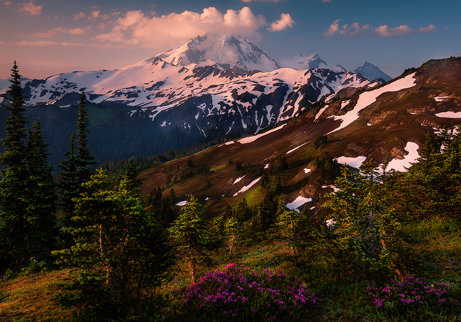 Photograph The Alpine Way of Life by Trevor Anderson on 500px
