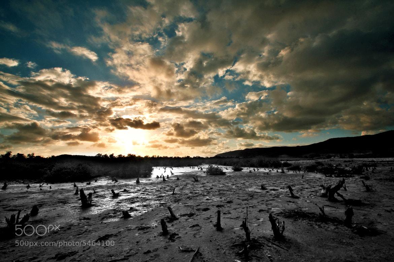 Photograph Strange Land by Matt Molloy on 500px