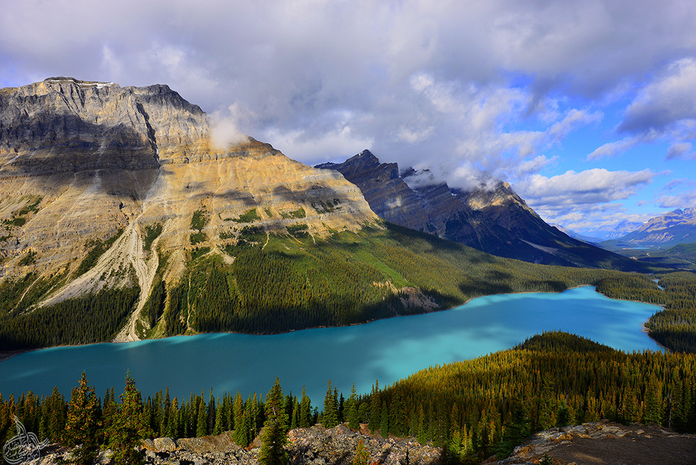 Photograph peyto lake by Ibraheem Alnassar on 500px