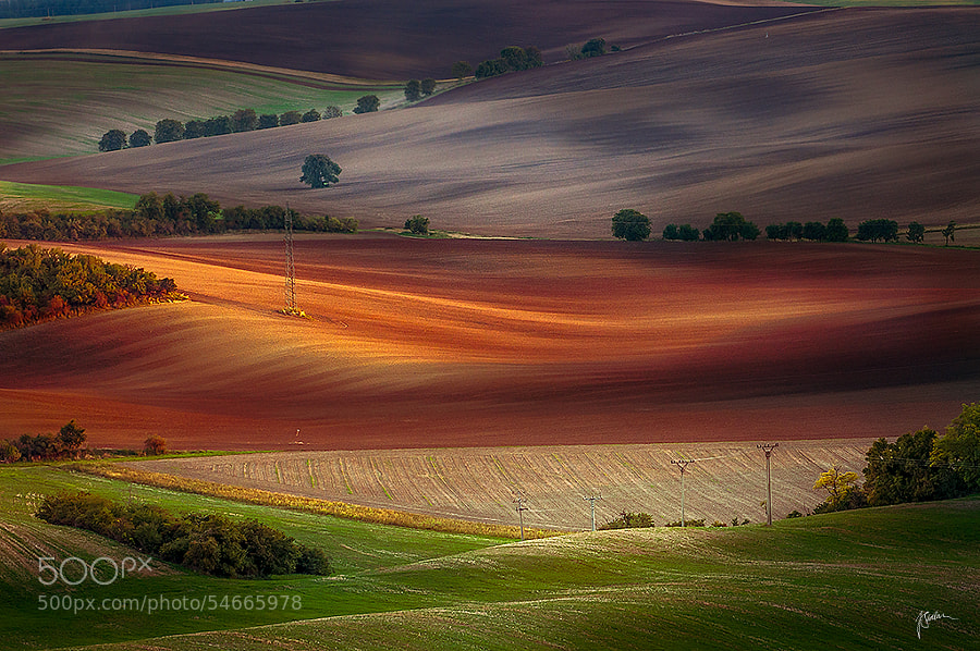Moravian fields by Janek Sedlar