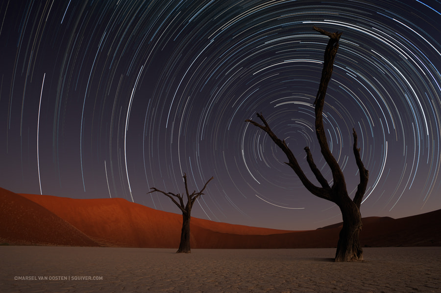 Photograph Circling The Dead by Marsel van Oosten on 500px
