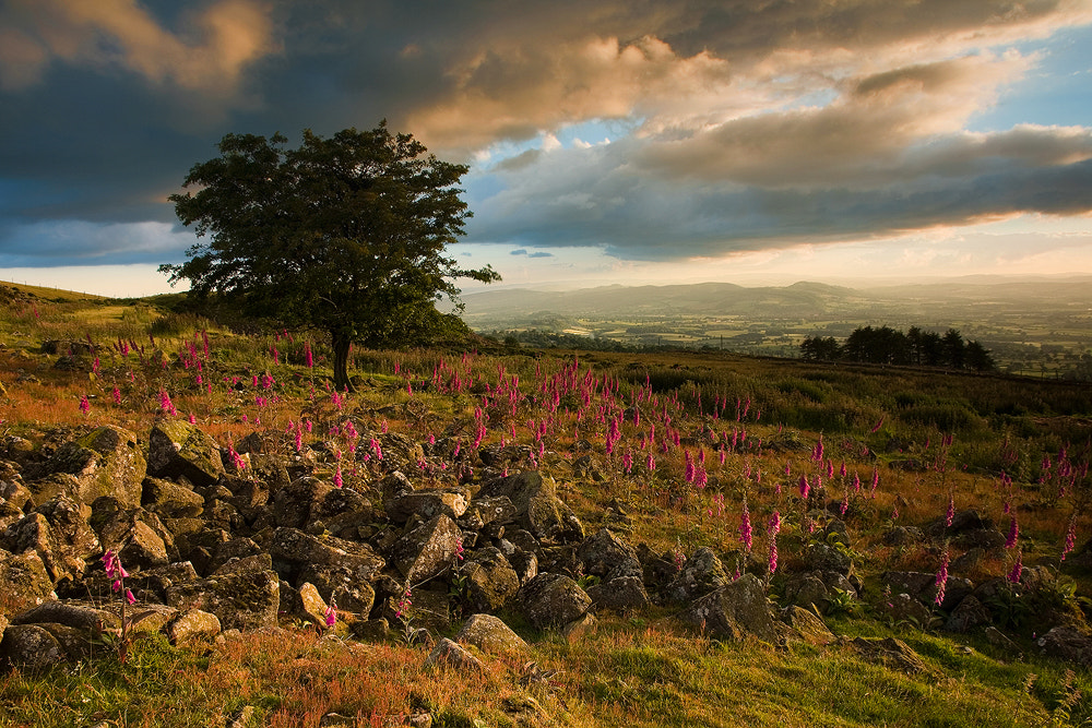 Photograph Incoming Storm, Clee Hill by Edward Fury on 500px