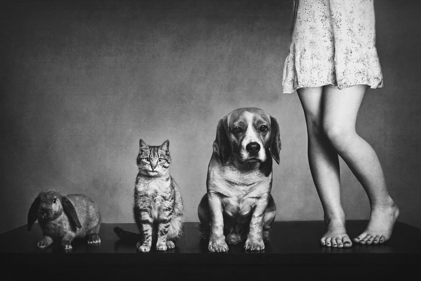 Photograph Family portrait by Monika Koclajda on 500px