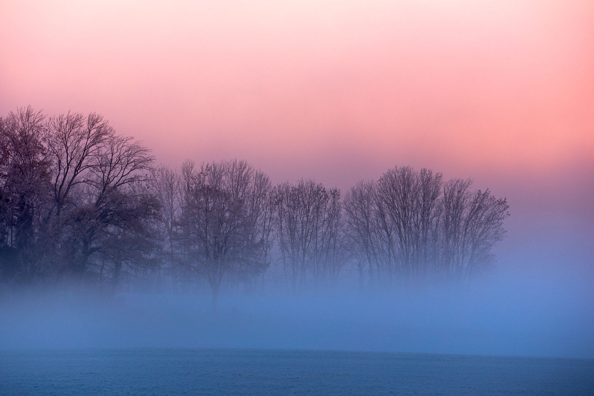 Photograph Blue Fog by Laurent Decuyper on 500px