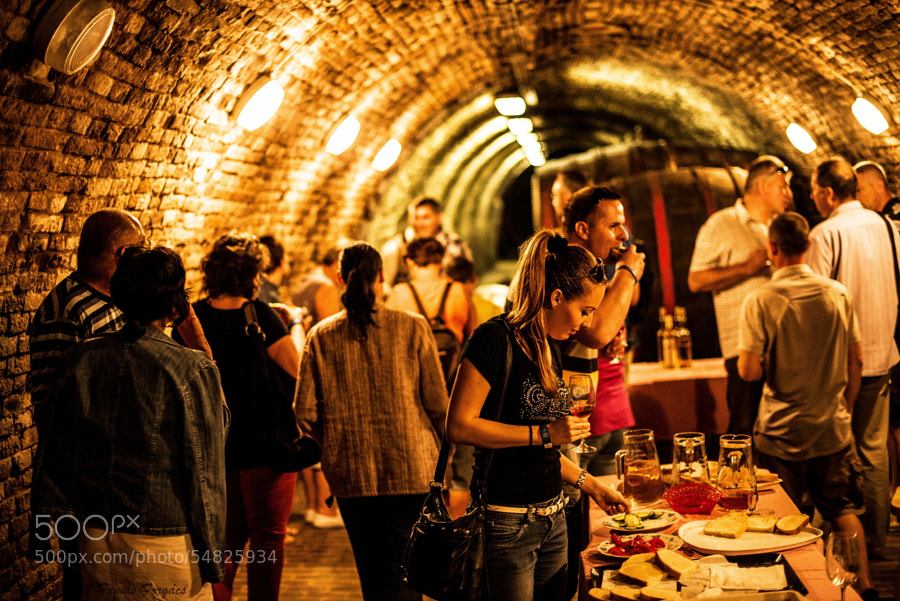 Photograph In the wine cellar by Tamas Forgacs on 500px