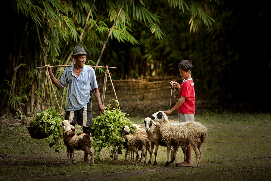 Photograph Feeding Time by Jeffry Surianto on 500px