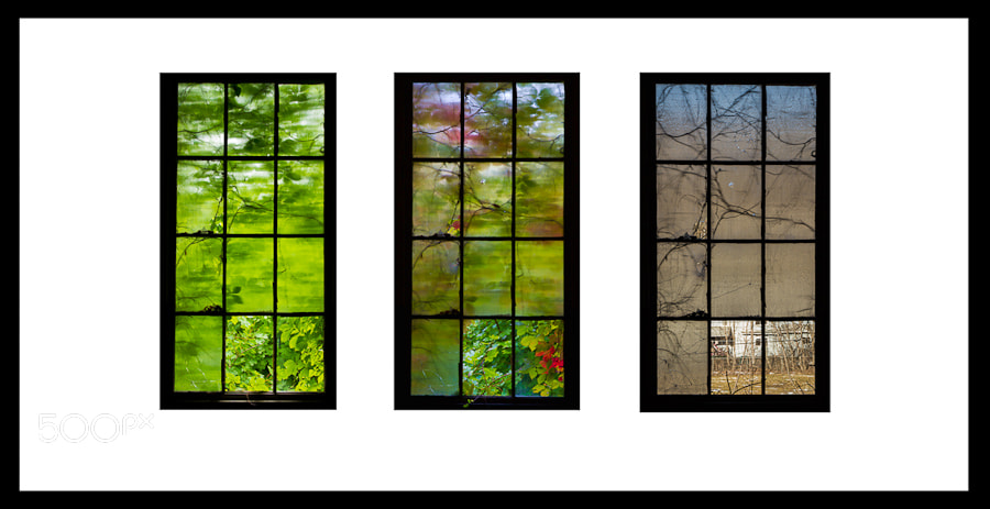Photograph Seasons by Stanley Silverman on 500px