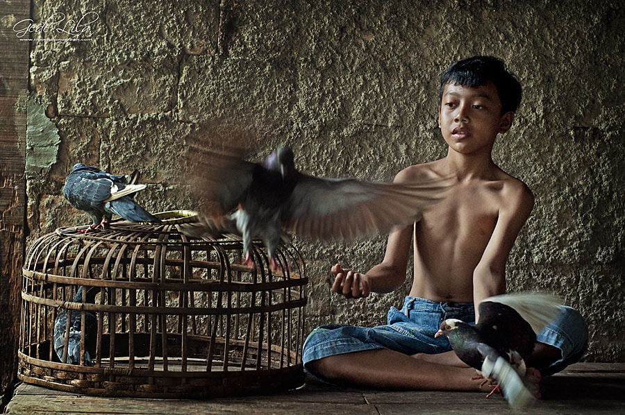 Photograph Playing with Birds by I Gede Lila Kantiana on 500px