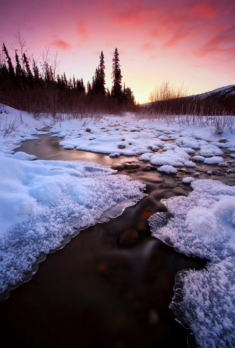 Photograph Decembers Chill II by Ron Perkins on 500px