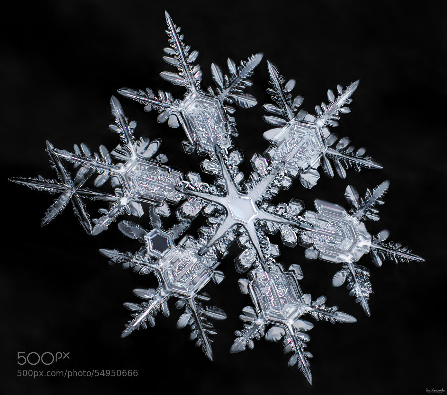 Photograph Starburst Snowflake by Don Komarechka on 500px