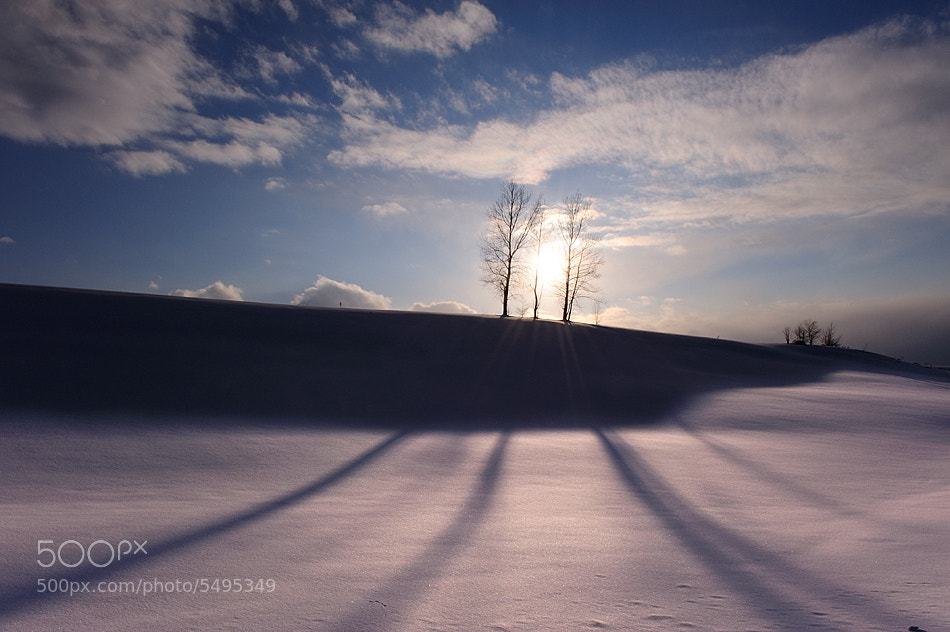 Photograph The Sun and Long Shadows by Kent Shiraishi on 500px