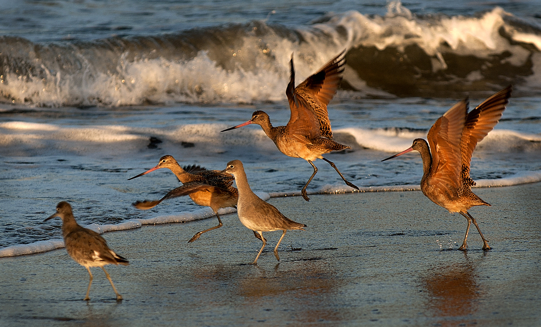 Photograph Let's go by Paul McConville on 500px