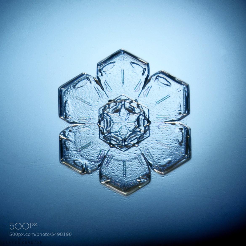 Photograph real snowflake! by Kichigin Sergey on 500px