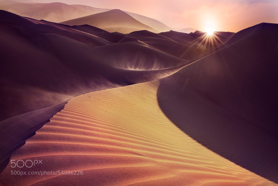 Photograph The Golden Way by Hamad al-failakawi on 500px