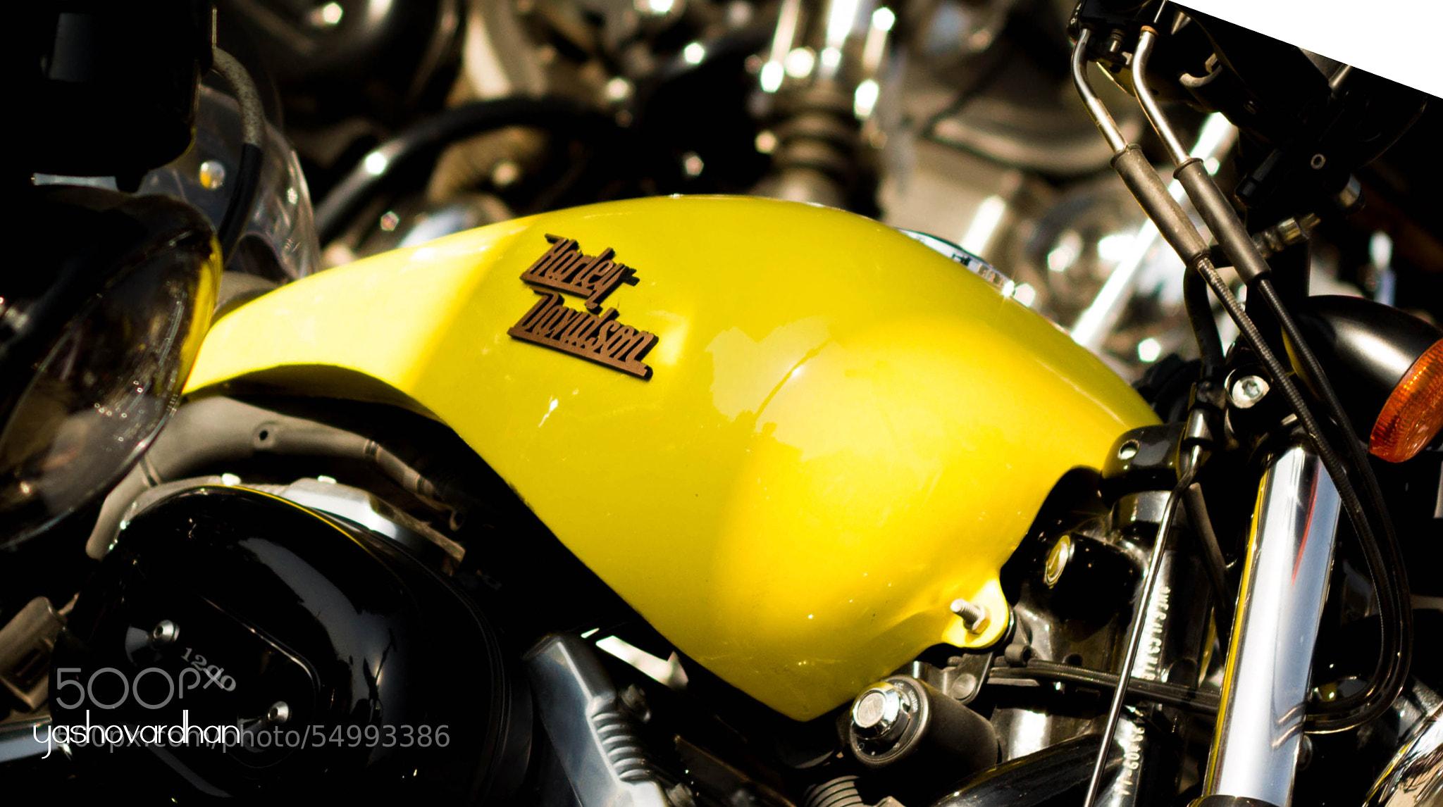 Photograph Harley by Yashovardhan Sodhani on 500px