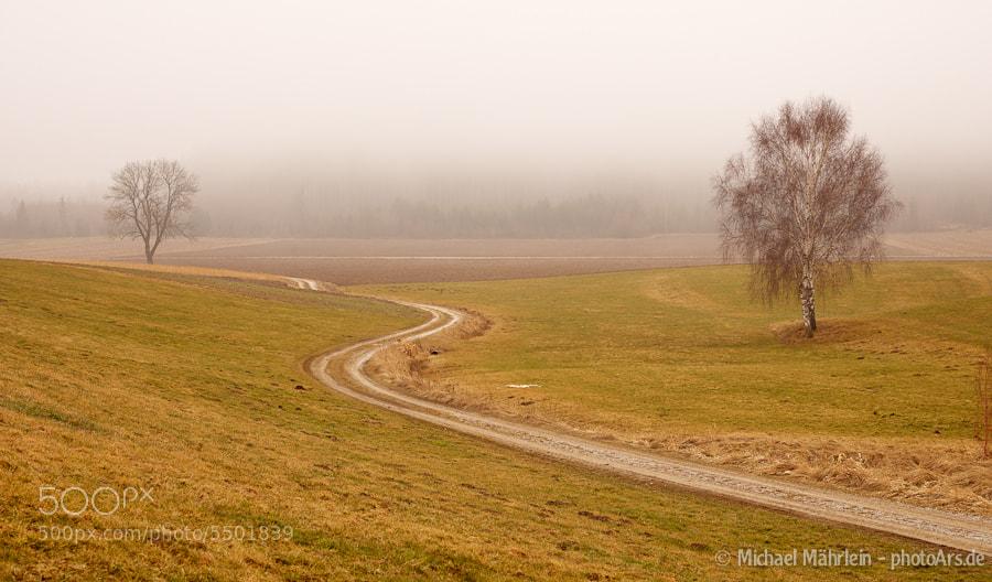 Photograph Way into the fog by Michael Mährlein on 500px