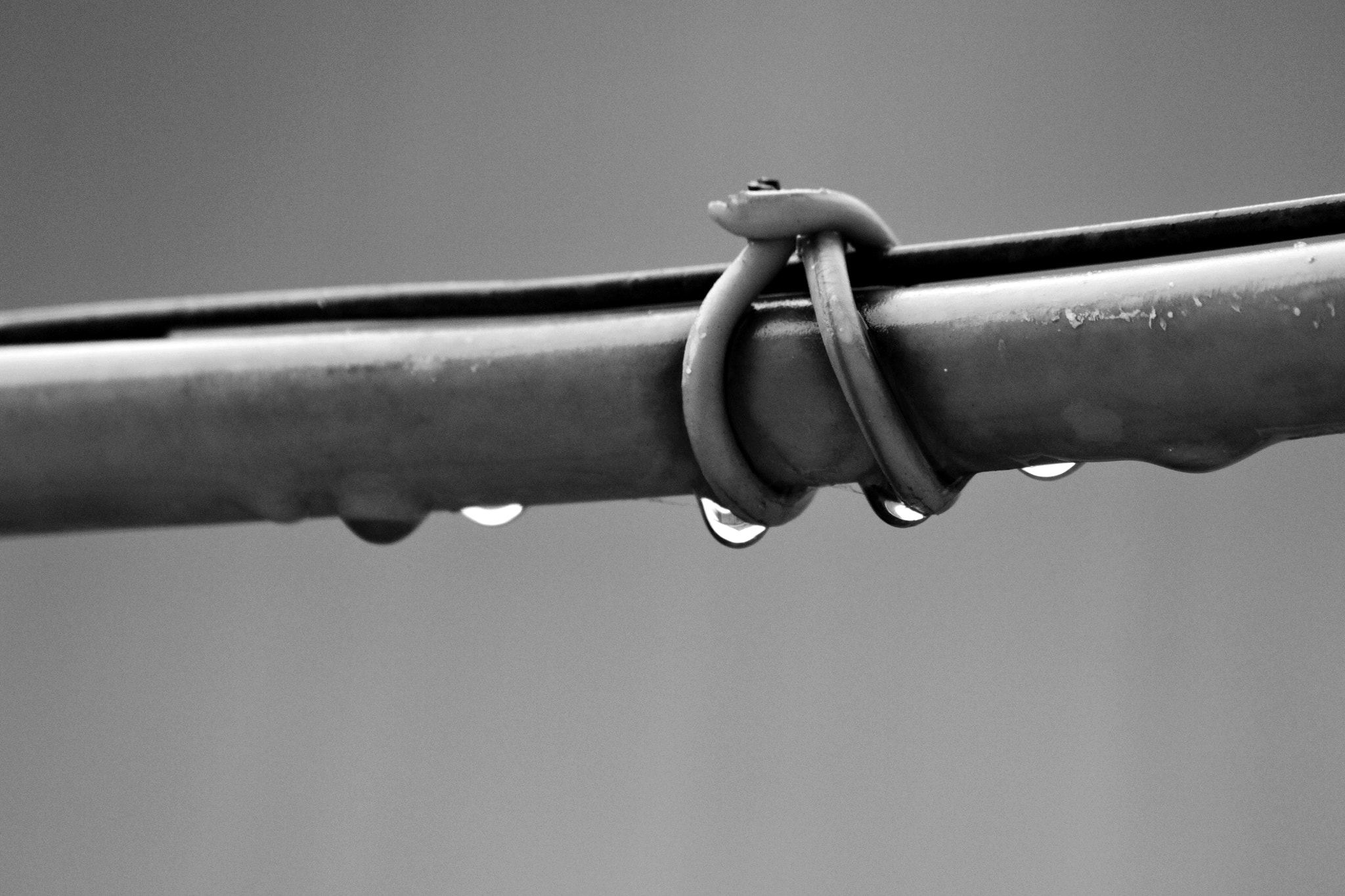 Photograph water drops :) by merve kan on 500px