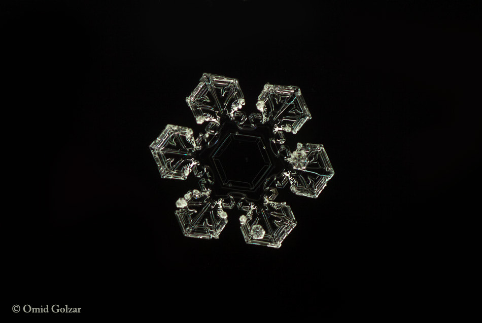 Photograph Snow flake 4 by Omid Golzar on 500px