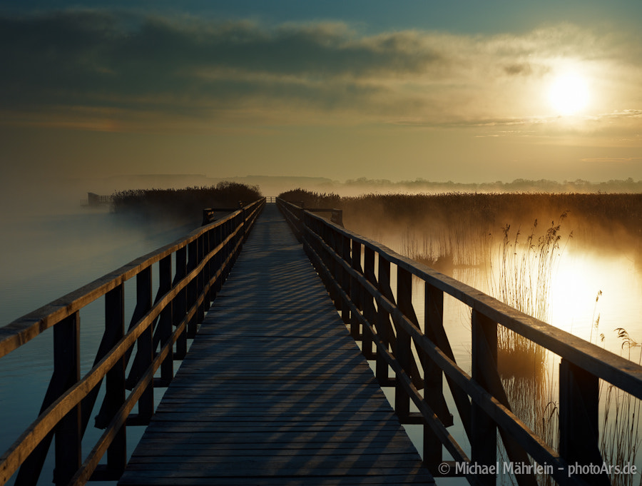 Photograph Sunrise at Federsee, Baden-Württemberg, Germany by Michael Mährlein on 500px