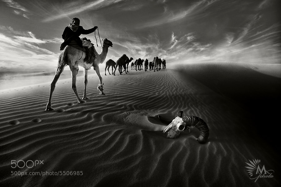 Photograph Desert Ship by Maitham AlMisry on 500px