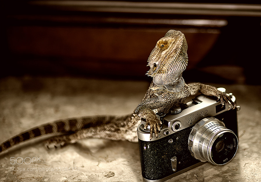 Photograph Rico and his camera by Gabriel Kosek on 500px