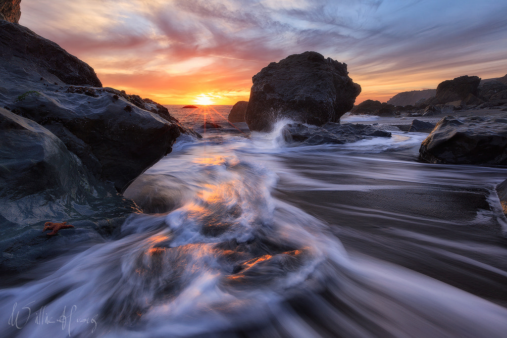 Photograph Sirens of the Sea by Willie Huang on 500px