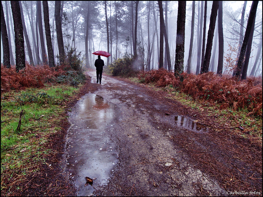 It´s raining again :) by Guillermo  Carballa on 500px.com
