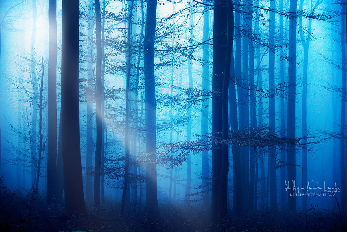 Photograph Light Box Blue's by Philippe Sainte-Laudy on 500px