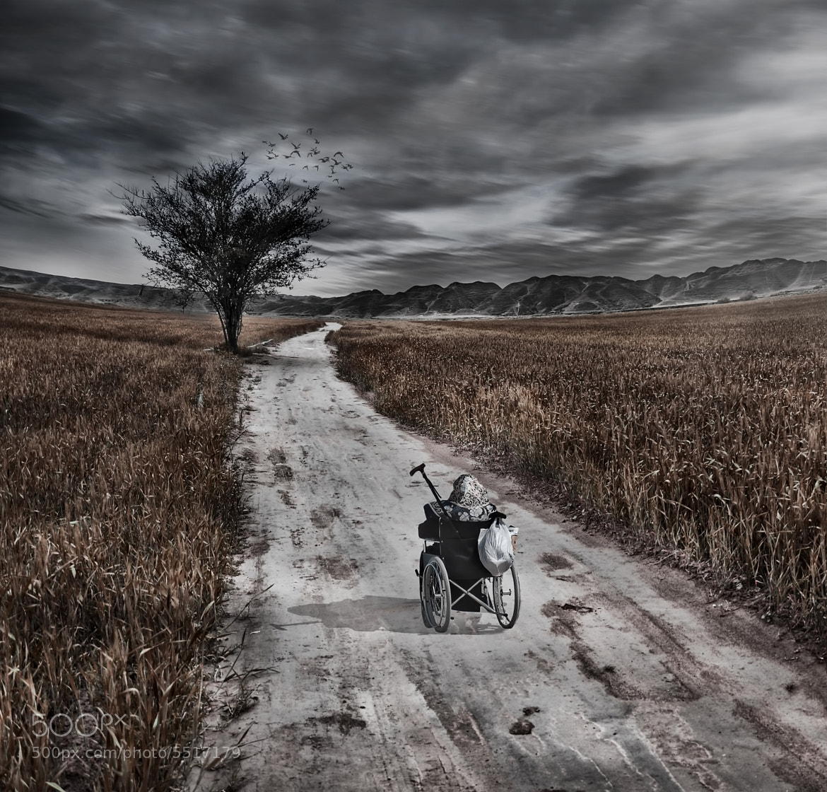 Photograph I cant Walk but I love to travel by Hossein Zare on 500px