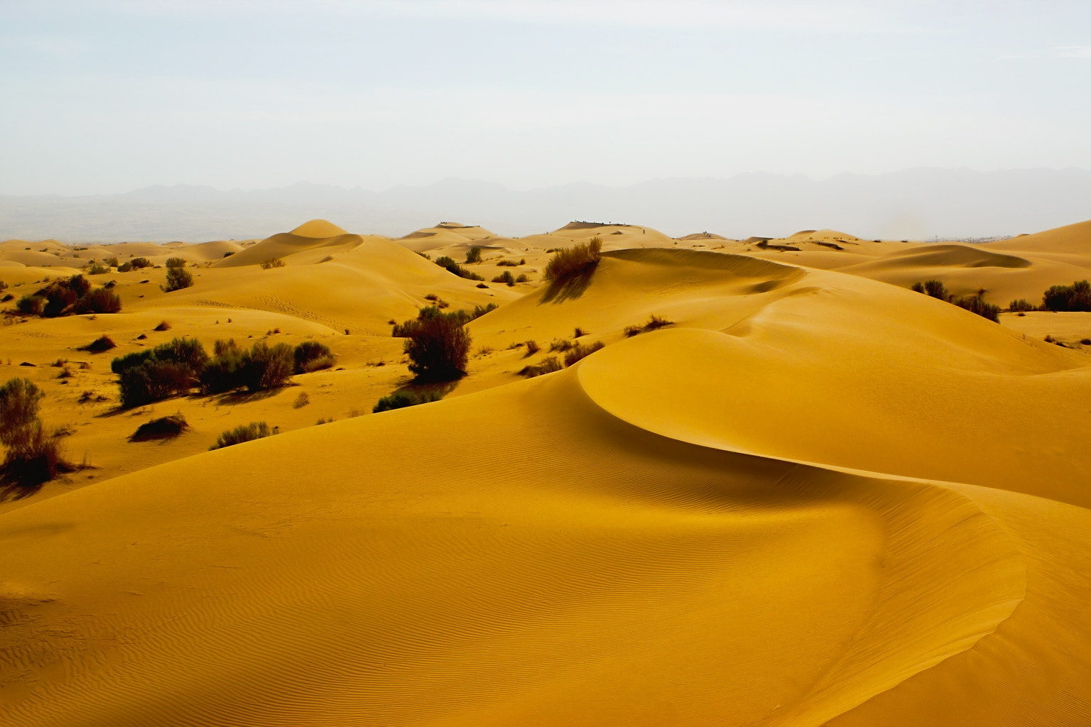Photograph ~Desert at noon~ by seranza on 500px