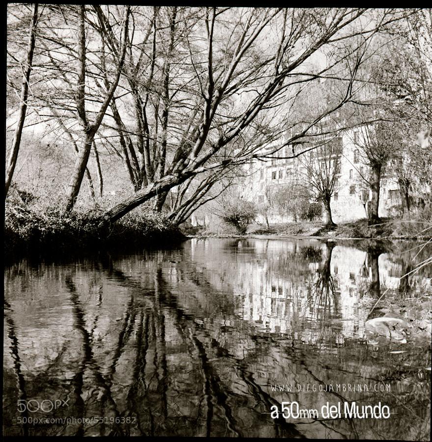 Vida y muerte en el río Arlanza by Diego Jambrina on 500px.com