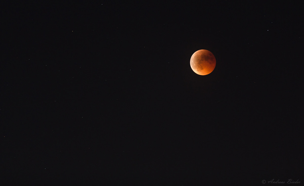 Photograph Red Moon by Andreas Bieder on 500px