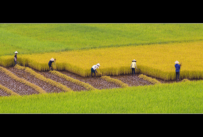 Photograph Zigzag by Bui Hung on 500px