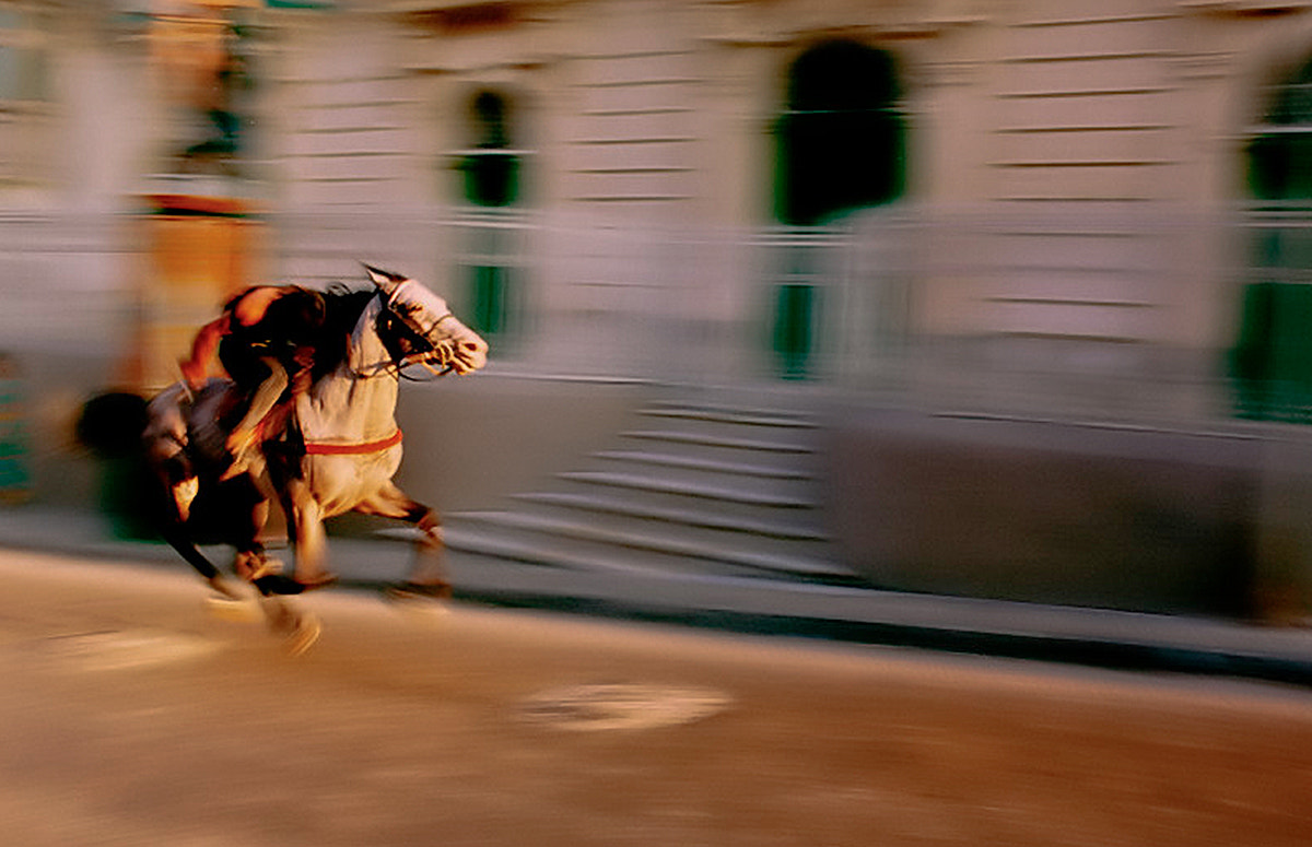 Photograph Palio by Vittorio Brambilla on 500px