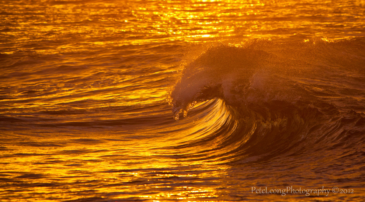 Photograph Golden Tubes by Pete Leong on 500px